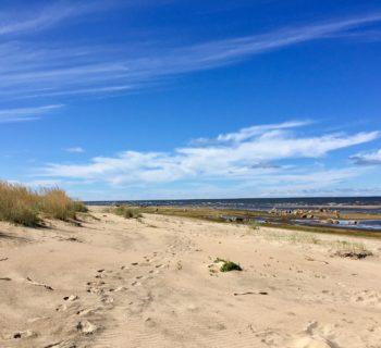 Reisebericht Finnland: Gewässer, Nadelwälder & stille Idylle