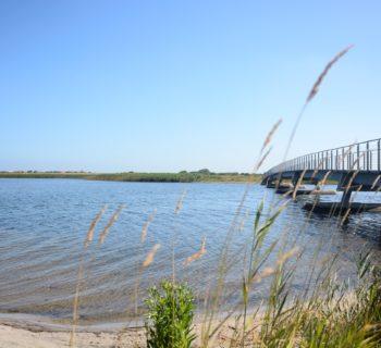 Dänemark.de: Die Plattform für Deinen Urlaub in Dänemark