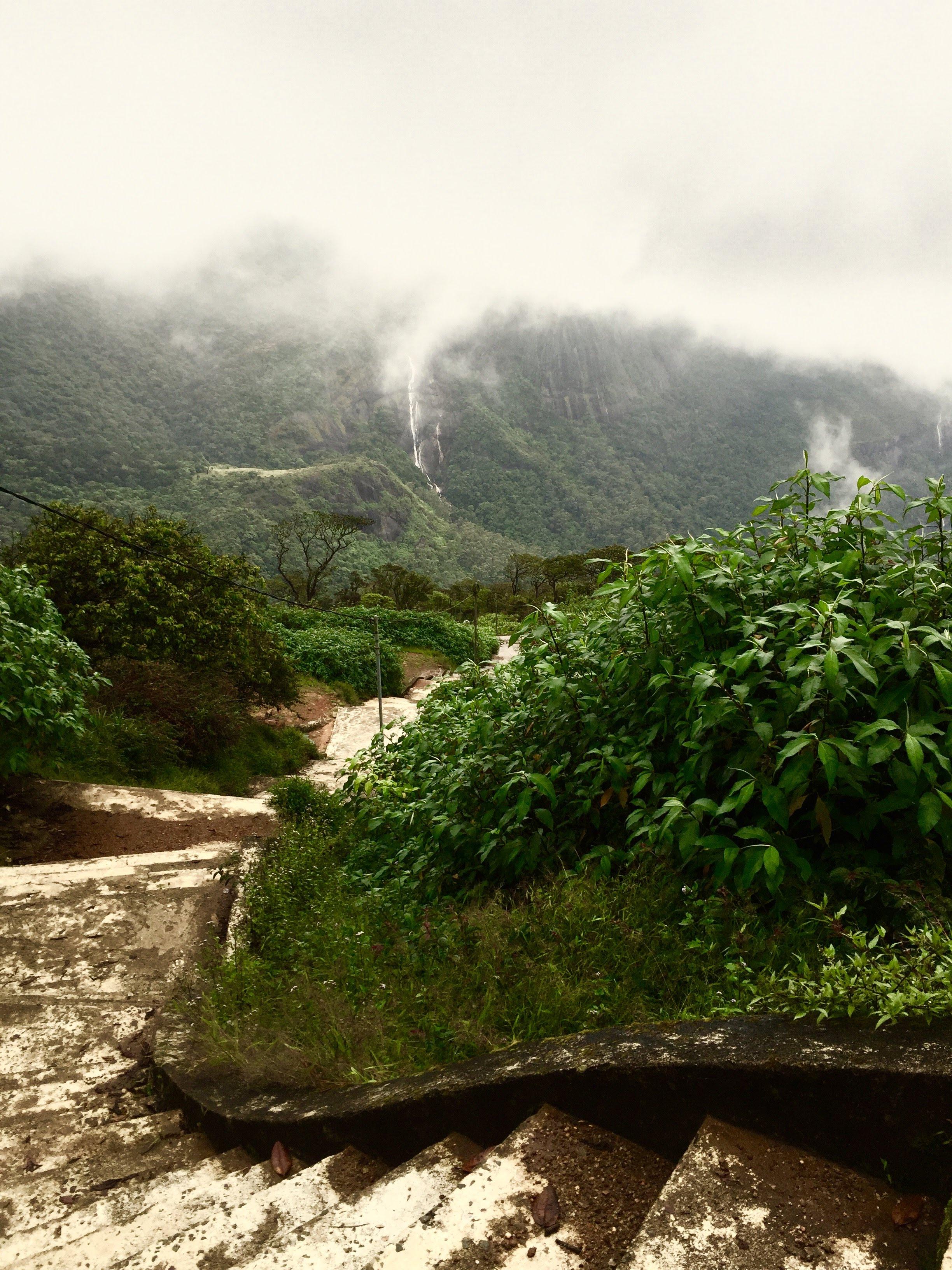 Weg Adams Peak Sri Lanka